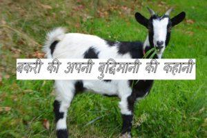 goat hindi story.jpg