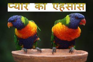 Love feeling love stories in hindi.jpg