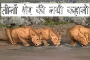 Three lion story in hindi.jpg